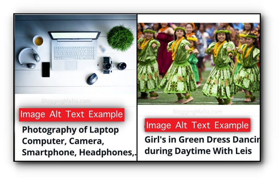 This is an Example of Image Alt Text